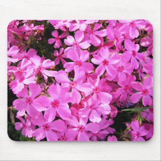Pretty Pink Phlox Mouse Mat
