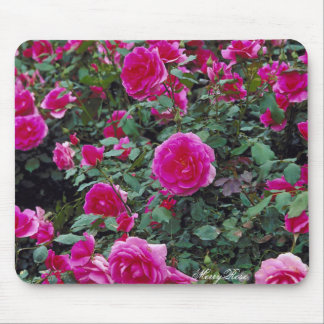 Pretty pink roses on bush mouse mat