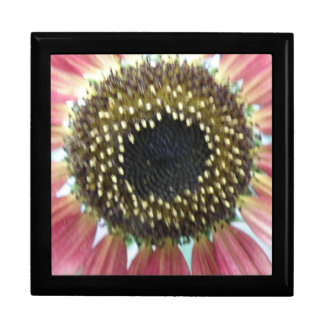 Pretty Pink Sunflower Gift Box