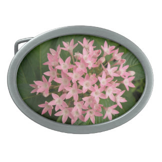 Pretty Pink Tropical Flowers Belt Buckle