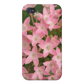 Pretty Pink Tropical Flowers  Case For iPhone 4