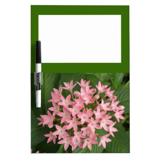 Pretty Pink Tropical Flowers Memo Board