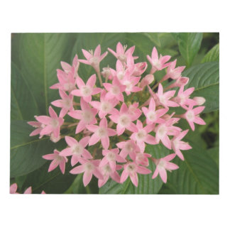 Pretty Pink Tropical Flowers Notepad