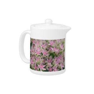 Pretty Pink Tropical Flowers Teapot