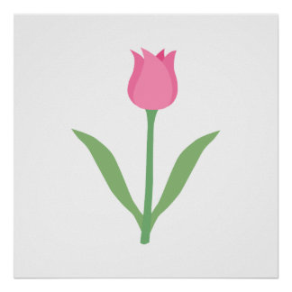 Pretty Pink Tulip Flower. Poster