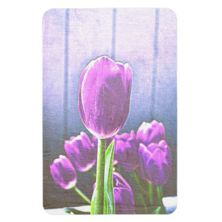 Pretty Pink Tulip Flowers Magnet