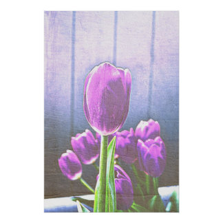 Pretty Pink Tulip Flowers Poster