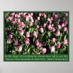 Pretty pink tulip garden posters