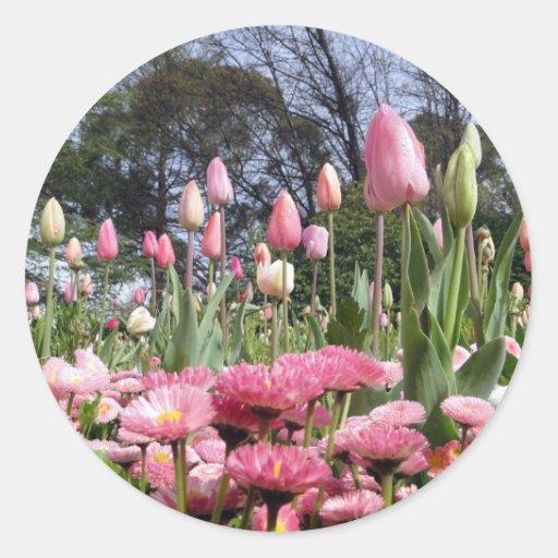 Pretty Pink Tulip Garden Sticker