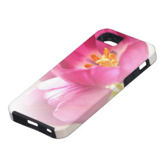 Pretty Pink Tulips Case For The iPhone 5