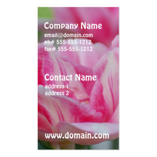 Pretty Pink Tulips Pack Of Standard Business Cards