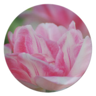 Pretty Pink Tulips Party Plates