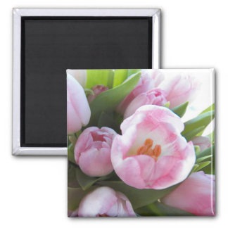 Pretty Pink Tulips Square Magnet