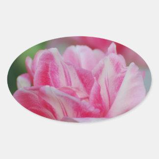 Pretty Pink Tulips Oval Sticker