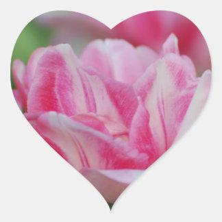 Pretty Pink Tulips Heart Sticker