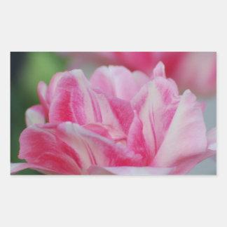 Pretty Pink Tulips Rectangular Stickers