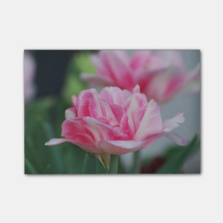 Pretty Pink Tulips Post-it® Notes