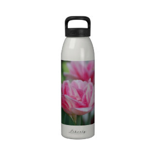 Pretty Pink Tulips Water Bottles