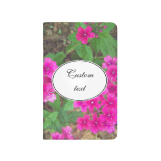 Pretty pink verbena flowers floral photo journal