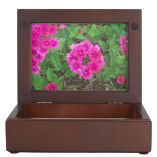 Pretty pink verbena flowers floral photo keepsake box