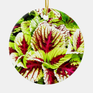 Pretty Plant Closeup Round Ceramic Decoration