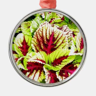 Pretty Plant Closeup Silver-Colored Round Decoration