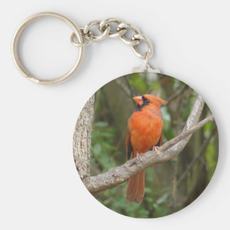 Pretty Profile Northern Cardinal Bird Keychain
