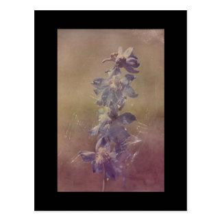 Pretty Purple Flower Grunge Postcard