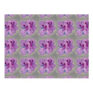 Pretty Purple Flower on Silver Postcard