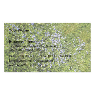 Pretty Purple flowers and grass Business Cards