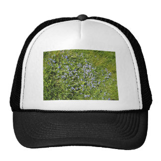 Pretty Purple flowers and grass Mesh Hat