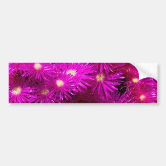 Pretty Purple Flowers in Full Bloom Bumper Stickers