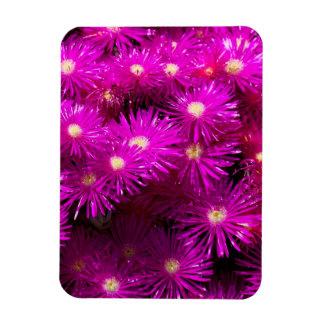 Pretty Purple Flowers in Full Bloom Vinyl Magnets