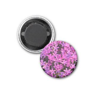 Pretty Purple Flowers Magnet