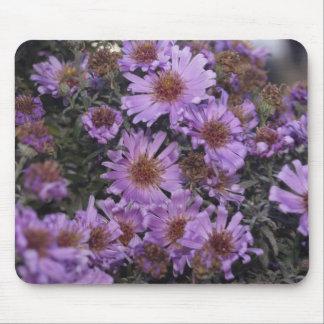 Pretty Purple Flowers Mousepads