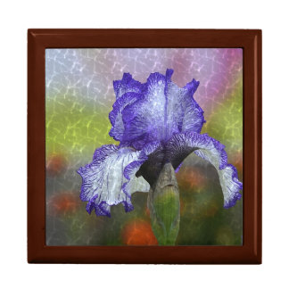 Pretty Purple Iris Gift Box