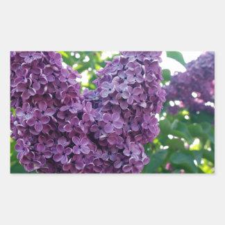 Pretty Purple Lilacs Rectangular Stickers