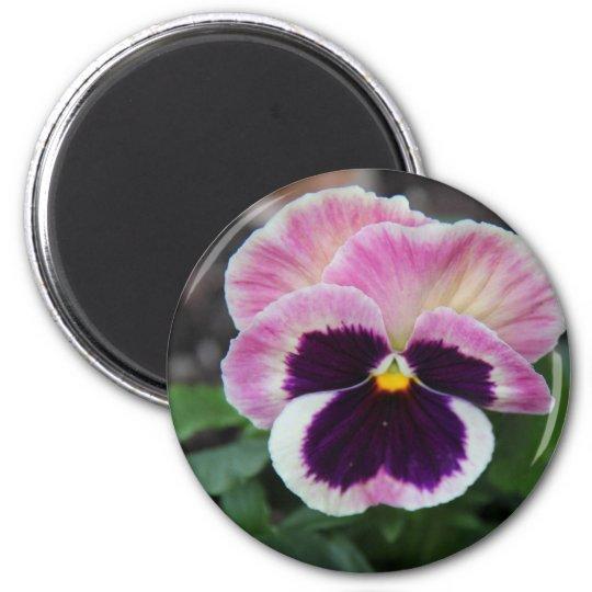 Pretty Purple Pansy Refrigerator Magnet