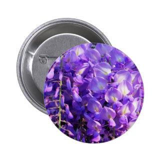 Pretty purple Wisteria flowers 6 Cm Round Badge