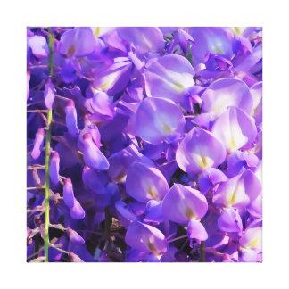 Pretty purple Wisteria flowers Canvas Print
