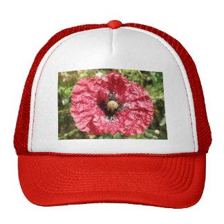 Pretty Red Poppy Flower Macro Hat