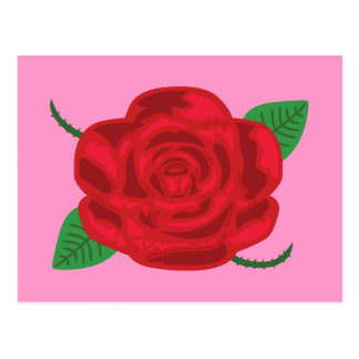Pretty Red Rose Postcard