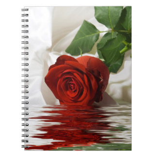 Pretty Red Rose with Reflection Spiral Notebook