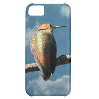Pretty Rufous Hummingbird iPhone 5C Covers