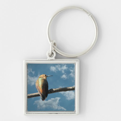 Pretty Rufous Hummingbird Keychains