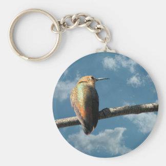 Pretty Rufous Hummingbird Key Chains