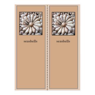Pretty Sea Shells Bookmark Postcard