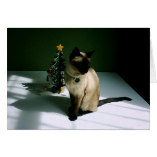 Pretty Siamese Cat with Tree Greeting Card