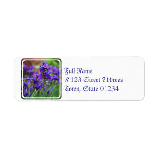 Pretty Siberian Iris Return Address Label