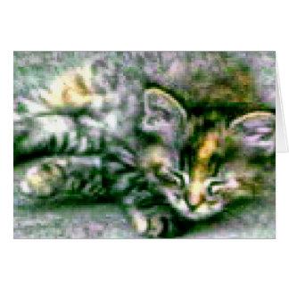 Pretty Sleeping Kitty Greeting Card